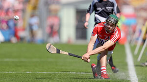John Horgan's hurling year in review: Canning and Coleman deserve the top players awards