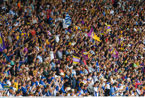 Wexford and Waterford supporters in the stand on Sunday. Picture: Ray McManus/Sportsfile