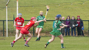 Cork camogie team need to follow the hurlers' lead