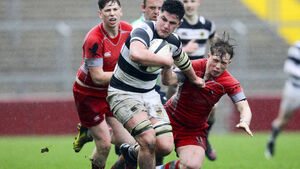 Six Cork players selected in Irish rugby squad