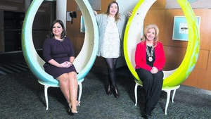 Network Cork is equipping women with better business skills