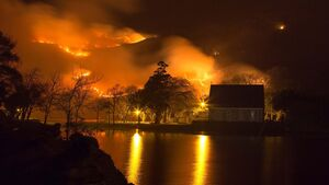 Cork County Council spending €250k each year fighting wildfires