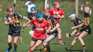The Cork and Kilkenny camogie rivalry is back with a vengence
