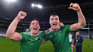 Limerick crush Waterford's dreams with a stunning show of strength