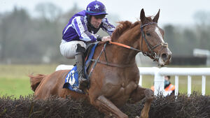 Winters keeps his winning run going with a double at Dungourney Point to Point