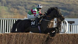 Cork racing is producing winners at every level