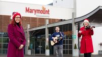 Apple employees bring festive cheer to Marymount Hospice and St Luke's