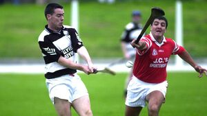 John Horgan: City hurling will be boosted by Seandún's championship return