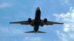 Government announces details of consular flights from Great Britain