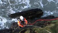 Lucky dog rescued by Coastguard off Cork coast