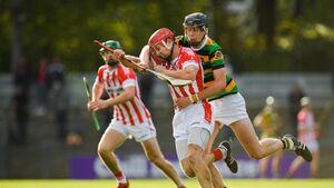 Imokilly's hurling triumphs a reward for administrators like Michael O'Brien