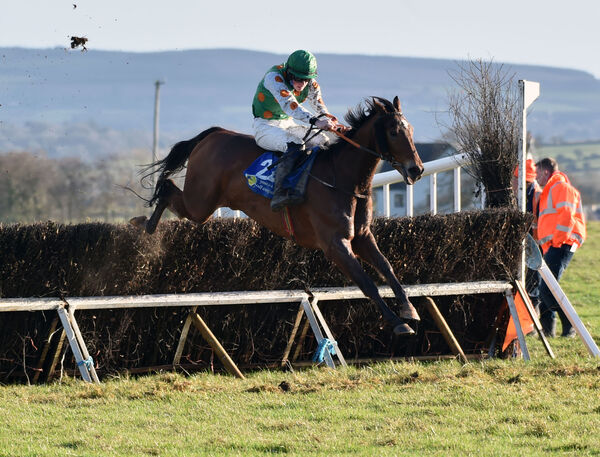 P Rogan on Fiston Du Mou over the last to win the maiden race for 5-Y-O geldings at Dromahane. Picture: Eddie O'Hare