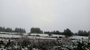 Snow and ice warning issued for Cork