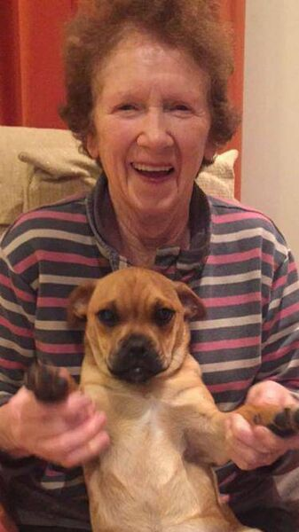 Mary O'Sullivan from Ovens pictured with her dog Ollie. Ollie has been missing since Sunday.