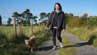 A dog walk a day plus a new smart fitness tracker keeps stress at bay