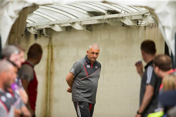 Former Cork boss Peadar Healy. Picture: INPHO/Cathal Noonan