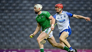 John Horgan: Tough call in midfield for hurling All-Star selectors