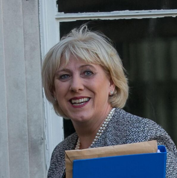 Minister for Social Protection Heather Humphreys TD.