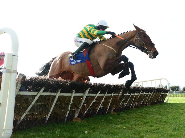 Roseys Hollow and Mark Walsh win the Race Displays Solerina Mares Novice Hurdle (Grade 3). Picture: Healy Racing