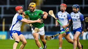 Limerick grab record haul of hurling All-Stars