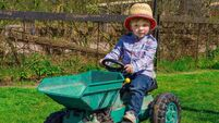 Can home schooling reconnect Ireland with its agricultural heritage?