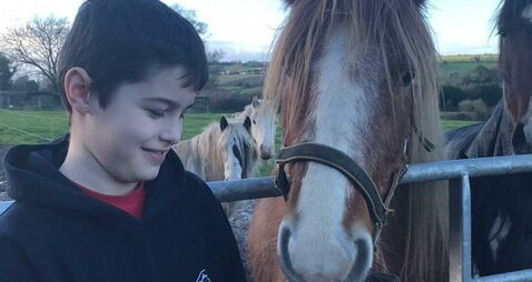 Cork boy to dye hair 'bright crazy colour' for animal charity