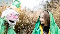 Cork St Patrick's Festival launches with a range of virtual events