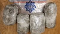 Gardaí in Cork seize suspected cannabis during search operation