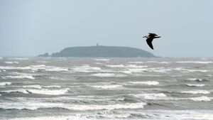 Yellow wind warning issued for Cork and six other counties