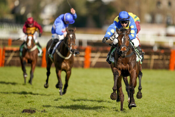 Harry Skelton riding Langer Dan (blue/yellow) clears the last to win the Paddy Power Imperial Cup Handicap Hurdle at Sandown Park last week. Picture: Alan Crowhurst/PA Wire.