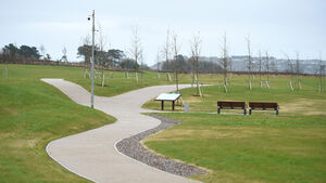 Bins installed but then removed from operation at newly opened Cork park