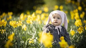 Cork people urged to support 'most important Daffodil Day yet'