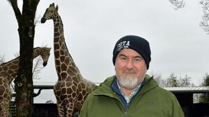 Fota Wildlife Park to reopen on April 26th