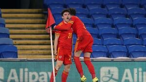 Daniel James backs Robert Page to lead Wales at Euro 2020 if needed