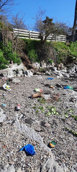 Litter at Whitepoint Strand in Cobh on Sunday. Pic courtesy of Cobh News