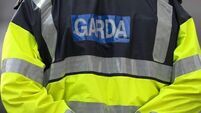 Witness appeal after shots fired at Limerick house