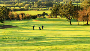 Golfers get back in the swing... as Cork clubs reopen today