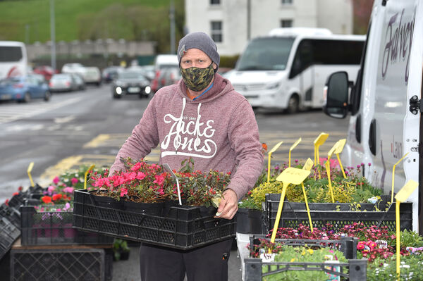 Kevin Falvey getting his plants ready for the Farmers Market in Bantry, West Cork. Picture Dan Linehan