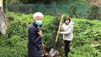 City residents association plants trees in memory of those who passed away during Covid