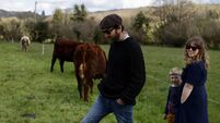 Family makes special cheese in the shadows of Cork mountains