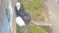 Cork County Councillor confronts illegal dumper on doorstep