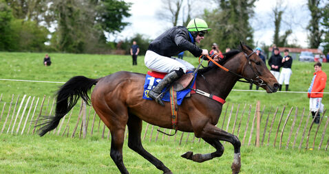 Cork's Shane Baragry on the double at the United Foxhounds Point to Point